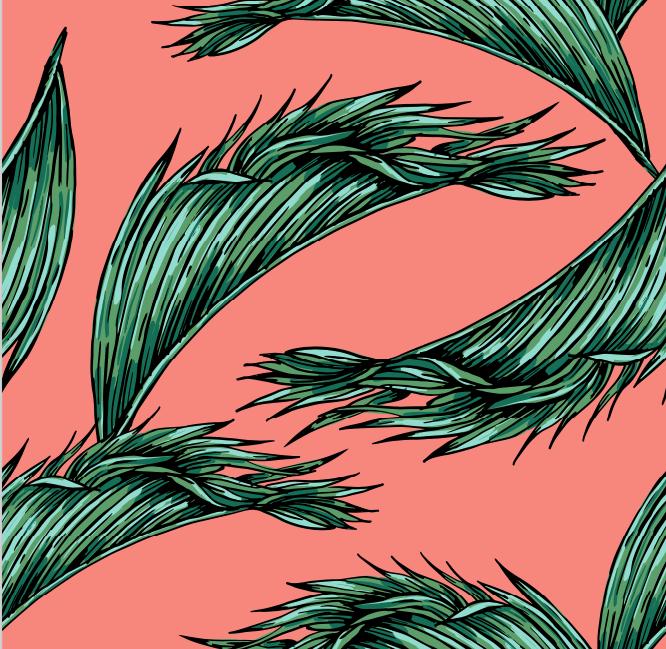 Розовые пальмы
